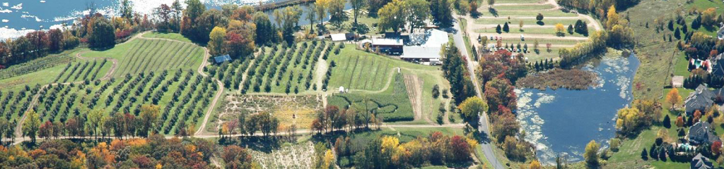 Aerial view of Pine Tree Apple Orchard