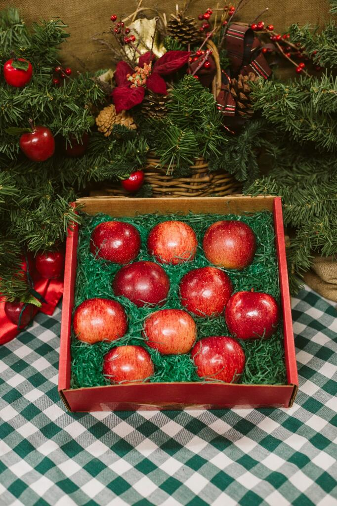 Junior Favorite Gift Box filled with apples from Pine Tree Apple Orchard